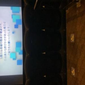 映画館に行ってみました