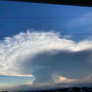 雲~。雷雨が来るぞ