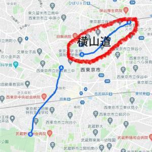 地元の古道を歩く(横山道編)
