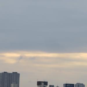 今日も曇り空、、、