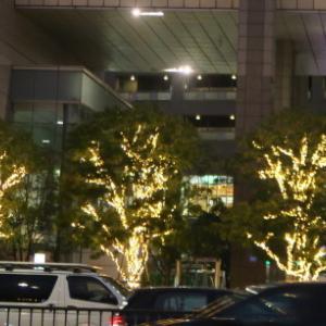 決めました!  お正月は東京で、、、