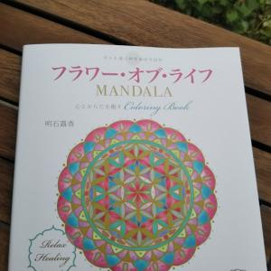 en extra story...information about coloring book