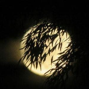 満月と半影月食