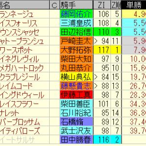 第33回ローレル競馬場賞中山牝馬S適性予想