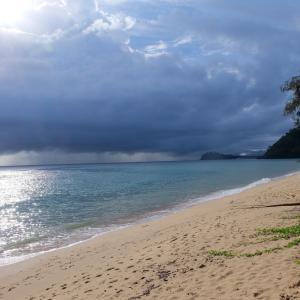 オーストラリア シドニーとケアンズ旅行 16日間 ケアンズ トリニティビーチ