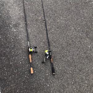 スモール釣れる野池