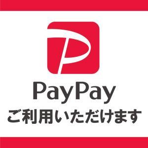 paypayが利用可能となりました!
