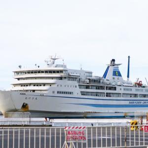 わんこと旅するカーフェリー 佐渡汽船で佐渡島へ行ってみたよ