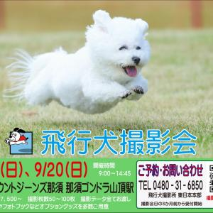 マウントジーンズ那須 飛行犬撮影会は荒天が予想されるため延期となりました。