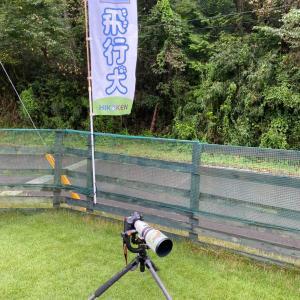 栃木の飛行犬撮影所で撮影会