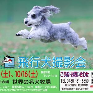5/29(土) 『世界の名犬牧場』飛行犬撮影会のお知らせ
