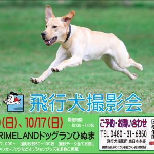 5/30(日) 『PRIMELANDドッグランひぬま』飛行犬撮影会のお知らせ