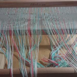 5色でリジットで綾織