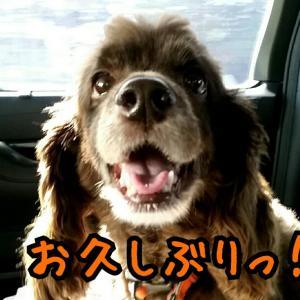 北海道へようこそ♪