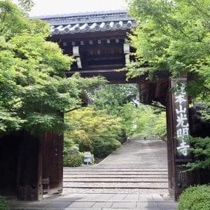 京都お寺巡り『光明寺』・『金蔵寺』