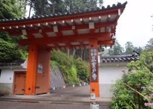 紫陽花が見頃✩『雨の三室戸寺』