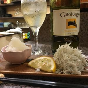 釜揚げしらす 酒飲み 飲み歩き 武庫之荘 阪急沿線 ヒール 裸足 ワイン