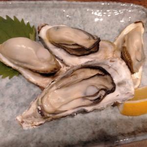 うおひろ 幻の1年牡蠣 生林檎酎ハイ saku的雑料理 シーフードカレー 焼き牡蠣 生牡蠣