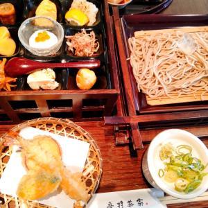 音羽茶寮 京都旅行 蕎麦 清水坂 舞台蕎麦 ざるそば 天ぷら