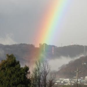 ちょっと久しぶりの虹