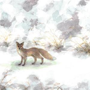 狐に出会った夜