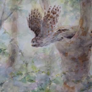 巣穴から飛び立つフクロウ