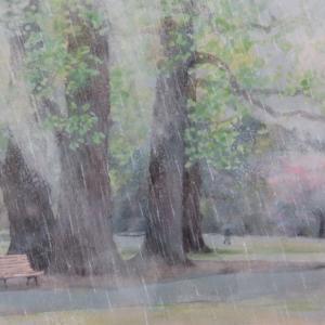 公園・雨の日