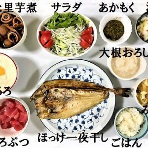 【夕食のメニューは和食系で~~~す ★ 『ほっけ一夜干し』『イカと里芋煮』などなど・・・】