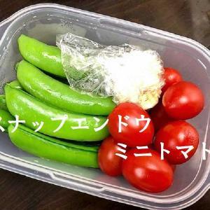 【お誕生日パーティーも兼ねてお弁当ランチ ★ お弁当はみどりこさんの手作り 《果実園》の美味しい物がいっぱい・・・】