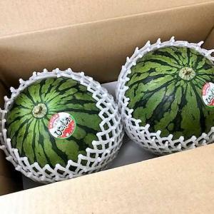 【『小玉西瓜』が届きました ★ 「ひとりじめ」というブランド ★  甘くて美味しい~~~♪】