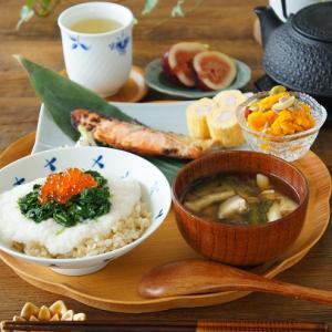 ネバネバ丼と鮭の西京焼き