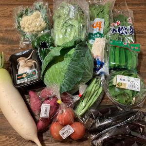 新鮮野菜がたっぷり!!