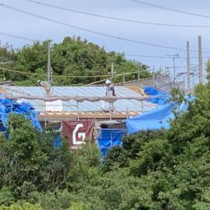 窓から見える注文建築「木の家」新築中!!