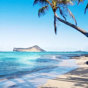 ハワイでも