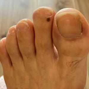 漁師さんの足の爪に興味津々