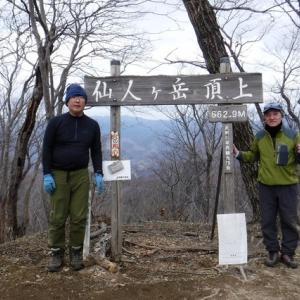 栃木・仙人ヶ岳(663m) <栃木百名山> 2020  1/11(土)