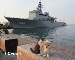 羊毛っ子と自衛艦Ⅱ