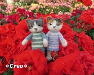 バラの国の羊毛猫