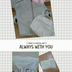購入品【NICO抱っこひも】