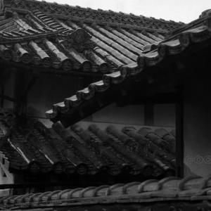 松山市 渡辺家住宅 誇らしげな屋根
