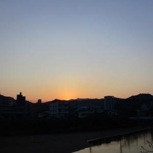 早朝の散歩  4月29日