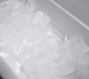 冷蔵庫の自動製氷機の給水タンクもカビが生えます