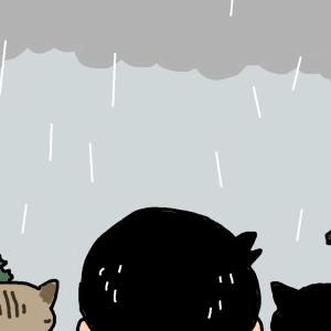 今日は雨が降らないとおもっていたら