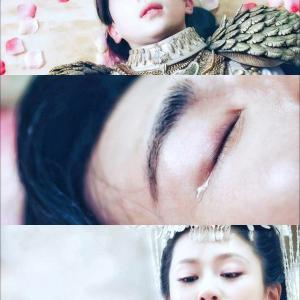 ☆霜花の姫~香蜜が咲かせし愛(香蜜沉沉烬如霜) その⑤鳳凰涅槃、魔尊臨世