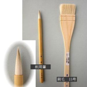キウイ & 新しい絵筆 (水彩)