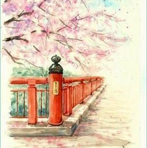桜 (水彩)