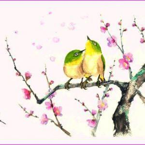 梅にメジロ~♪(水彩)