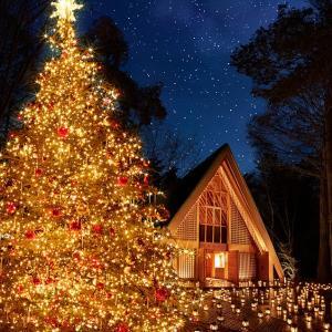 雅-miyabi-からのクリスマスプレゼント!!【平日限定フェア】