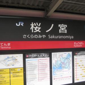 【テキトー駅めぐりVol.4】JR西日本・大阪編Part4「桜ノ宮で桜を見る」