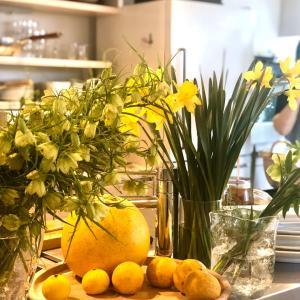 トラネコボンボンの黄色の昼食会